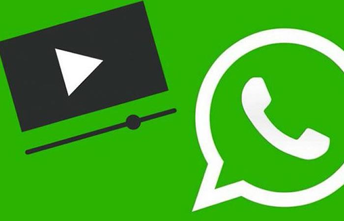 videochamada pelo WhatsApp